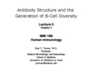 lecture 5 antibody