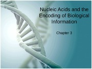 2_NucleicAcids_Transcription_Translation_ProteinStructure