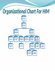 Healthcare organizational Chart