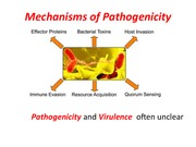 Lecture 6 - Mechanisms of Pathogenicity