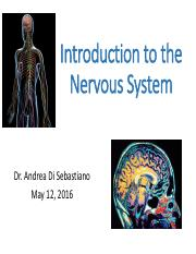 Lecture 3 Introduction+to+the+Nervous+System-2.pdf