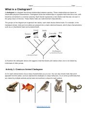 What is a Cladogram_ (1).docx