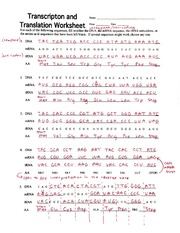 Practice 1 KEY - Transcription 8 Translation Summary For each ...