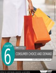 Chapter 6 - Consumer Choice and Demand.pptx