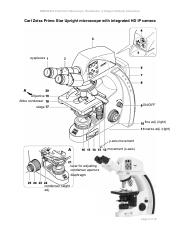 Microscope Labelled.pdf
