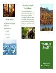 temporate forest brochure.docx