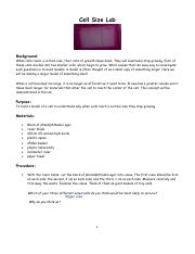 Cell+Size+Lab+With+Agar+Cubes+%28Knowledge%29.pdf