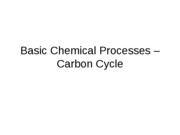 2 - Basic Chemical Processes - Carbon Cycles