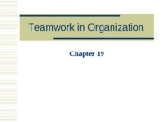 Teamwork in Organization