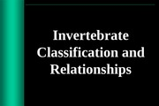 1. Classification and Nomenclature