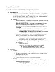 Study Guide Chapter 3 part 1.pdf