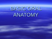 BASIC ORAL ANATOMY