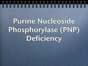 Purine Nucleoside Phosphorylase Deficiency