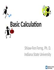 L0_calculation.ppt