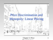 Linear Pricing Notes
