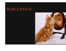 Lecture 15-16 Perception