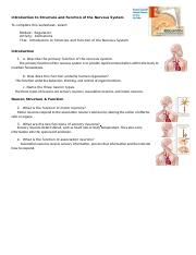 anim_introduction_structure_function_nervous_system_worksheet.doc