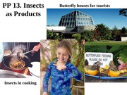 13-commercial insects-2014-part  one