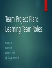 15. MGT 312 team Project Plan.pptx