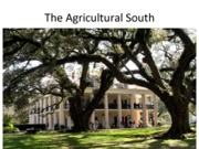 The Agricultural South 3-2