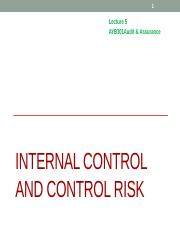 L3011503_5 Internal Control and Control Risk(1).pptx