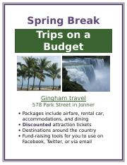2 Pages Lab 1 Spring Break Flyer