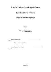 English report- tree damage1