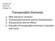 Lecture 10 - transposable Elements