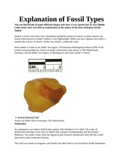 Explanation of Fossil Types