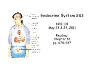 lecture39and40_Endocrine2and3_PRINT
