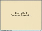 Lecture 4 - Consumer Perception
