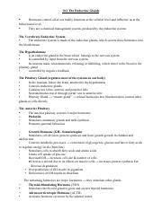 10.2 The Endocrine System-student.doc.pdf