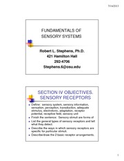 Section 4 Stephens 3101- Sensory-Motor-2013wQ&A