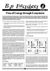 016 - Flow of Energy through Ecosystems