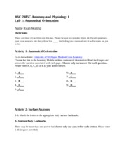 Lab_01_AnatomicalOrientation_revised