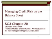 CHP20 Managing Credit Risk on the Balance Sheet