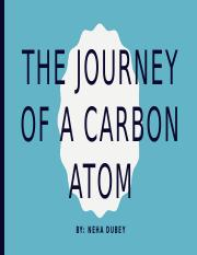 3.05 The Journey Of A Carbon Atom.pptm