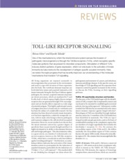 TOLL-LIKE RECEPTOR SIGNALLING