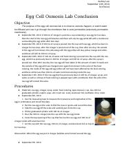 egg osmosis lab(1).docx - Introduction to Osmosis I What ...