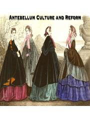 American History Notes Antebellum Culture and Reform