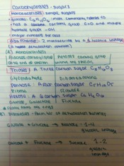 Bio Lecture Notes12