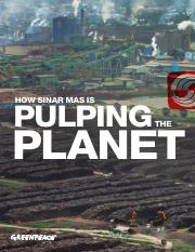 Sinar-Mas-Pulping-The-Planet