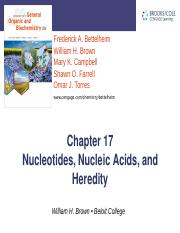 chapter25_nucleic acids.ppt