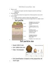ES101 Week 6 Lecture Notes – Soils.docx