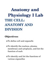 Lab Cell Anatomy and Division