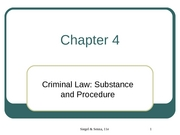 Criminal Justice Chapter 4 Slides