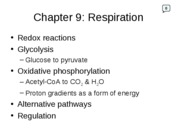 Lecture Slides- Respiration Ch9