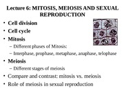 comparing and contrasting mitosis and meiosis worksheet