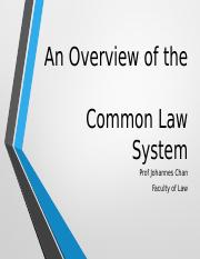 An Overview of the Common Law System.pptx