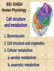 Cellstructure.cellmetabolism.ppt